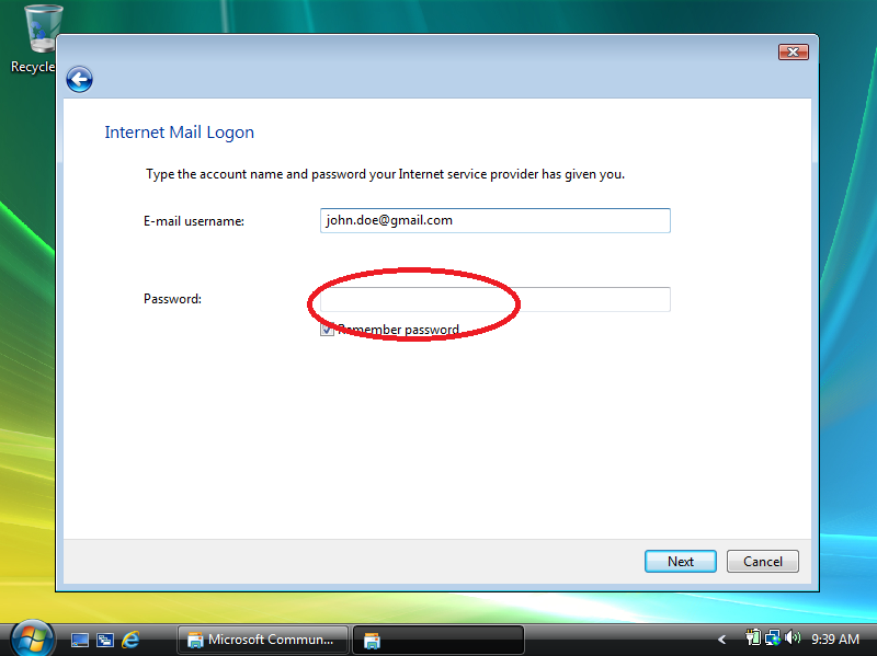 Enter your Gmail password.