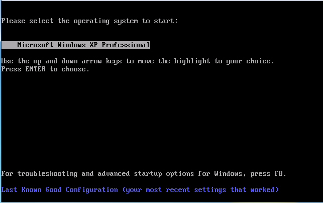 Select your desired operating system and press Enter.